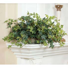 OfficeScapesDirect English Ivy in Oval Silk Plant