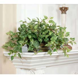 OfficeScapesDirect Pothos Silk Plant
