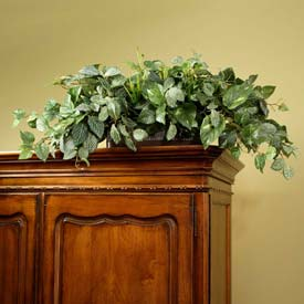 OfficeScapesDirect Pothos & Fittonia Armoire Topper Silk Plant