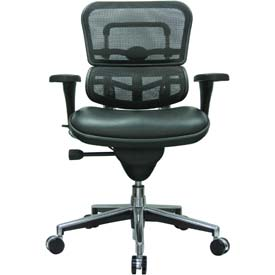 ERGOHUMAN Mid Back Chair, LEM6ERGLO-BKCOMBO(N), Black Mesh/Leather, Adjustable Arms