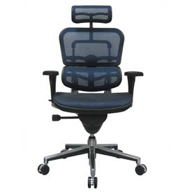 ERGOHUMAN Executive High Back Chair, ME7ERG-BLUE(N), Blue Mesh, Adjustable Arms