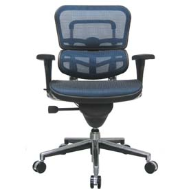 ERGOHUMAN Mid Back Chair, ME8ERGLO-BLUE(N), Blue Mesh, Adjustable Arms