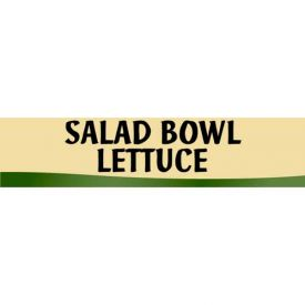 Salad Bowl Lettuce Grocery Signs (2-Track Fresh Look Photo Insert) by