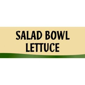 Click here to buy Salad Bowl Lettuce Grocery Signs (3-Track Fresh Look Photo Insert).