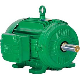 WEG Cooling Tower Motor, 06018ET3PCT364T, 60 HP, 1800 RPM, 200 Volts, 3 Phase, TEFC