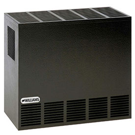 Williams Enclosed Front Room Heater 2001621A Propane 20000 BTU by