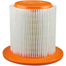 Hastings® AF1016 Air Filter - Pkg Qty 2