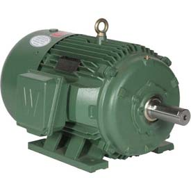 Worldwide Electric Motor PEWWE40-12-575-364T, PREM EFF, TEFC, Rigid, 3 PH, 364T, 575V, 40.6 FLA