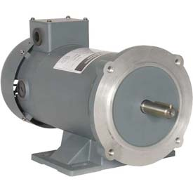 Worldwide Electric PM DC Motor WPMDC1-18-180V-56CB, TENV & TEFC, 56C, 180V, 1 HP, 1800 RPM