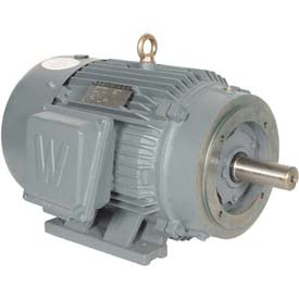 Worldwide Electric T-Frame Motor PEWWE60-12-404TC, GP, TEFC, Rigid-C, 3 PH, 404TC, 73.3 FLA