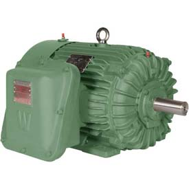 Worldwide Electric EXP Motor XPEWWE40-18-324T, TEXP, Rigid, 3 PH, 324T, 40 HP, 1800 RPM, 45.5 FLA