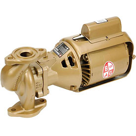 Bronze Body 2 IN. BNFI Pump 1/6 HP Single Phase